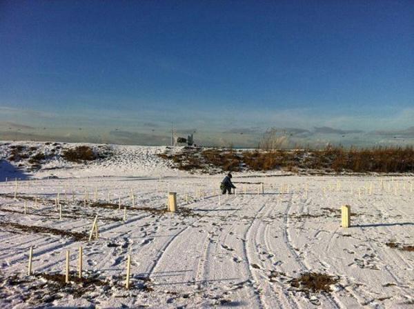 Портрет невероятных размеров снегом и землей с помощью экскаватора