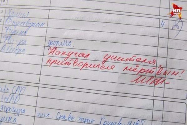 Записи в дневниках
