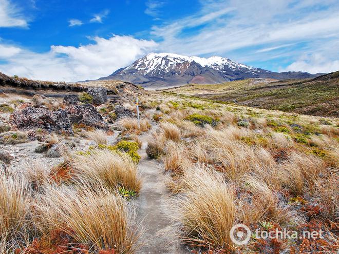 10 стран, которые обязательно стоит посетить. Новая Зеландия