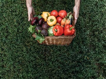 Сезонные продукты: что покупать на рынке в июле