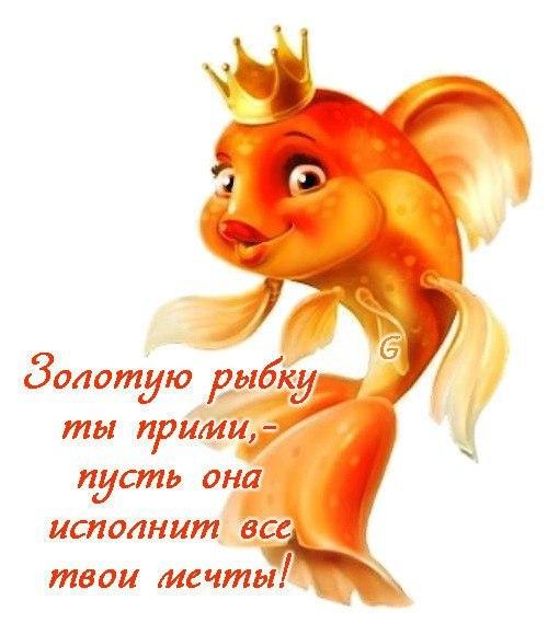 Золотая рыбка с днем