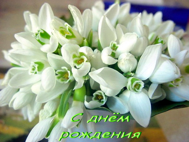 Цветы лилии фото букет красивой