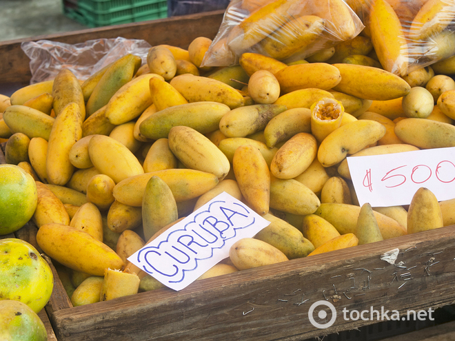 Гурман-тур екзотичні фрукти. Куруба