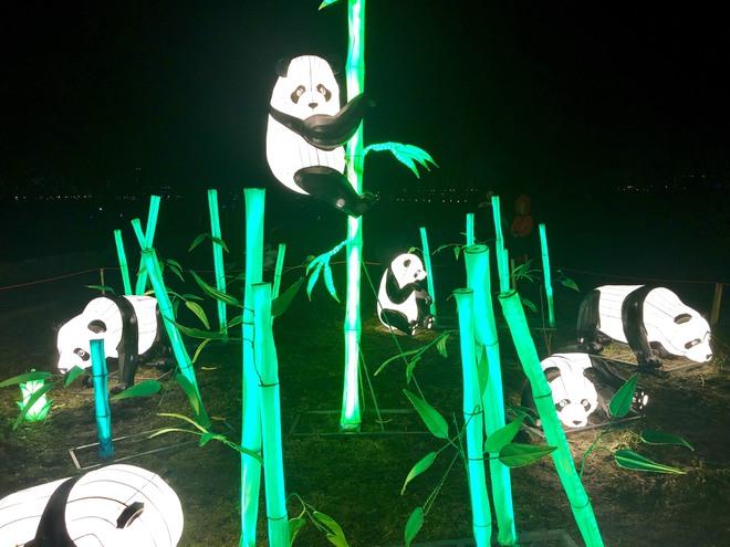 Фестиваль китайских фонарей 2019: киевлян приглашают установить рекорд на самое массовое селфи