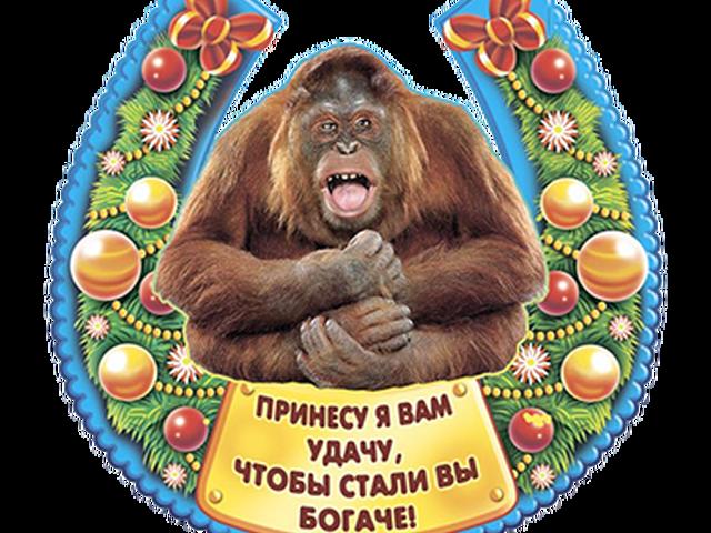 Поздравление рожденных в год обезьяны