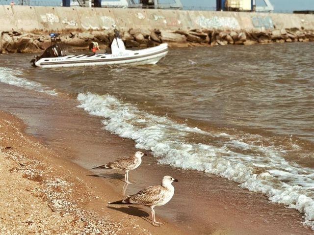 Мариуполь минет на улице — photo 8