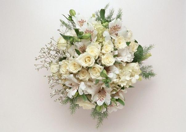 Нежные цветы к празднику