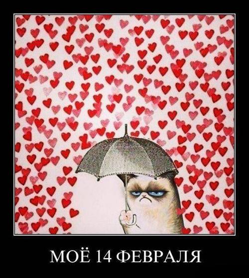 Демотиваторы с днем Св. Валентина