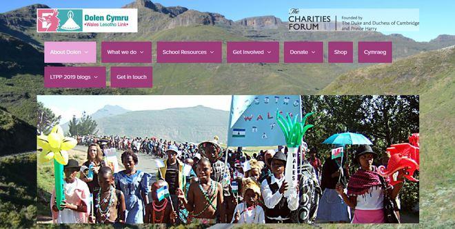 screenshot сайта благотворительного фонда Dolen Cymru