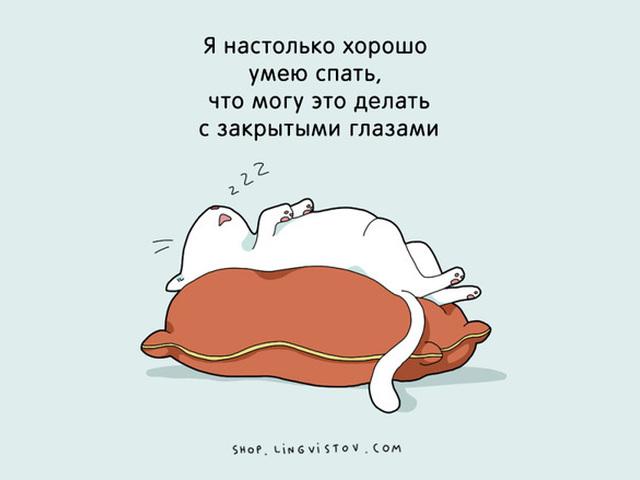 А что все уже спят картинки прикольные