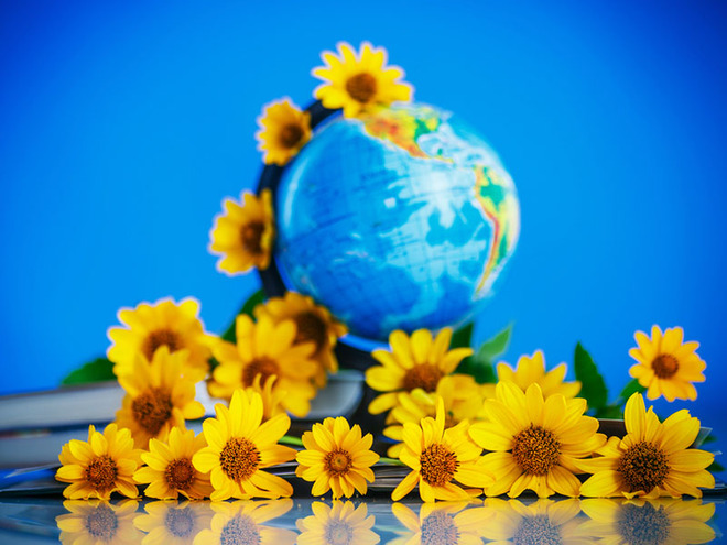 День учителя, глобус, цветы