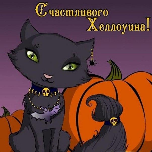 Мурррчащего Хэллоуина