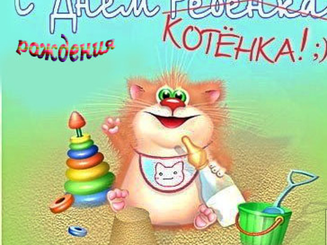 Открытки с днем рождения с котятами прикольные, картинки