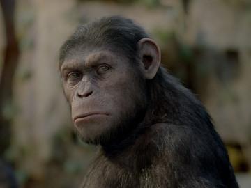 Повстання планети мавп
