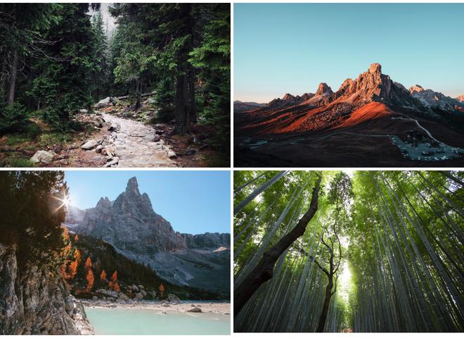 День фотографа: 12 фотографий природы, которые удивляют и вдохновляют