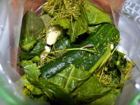 Малосольные огурцы в пакете пошаговый рецепт с фото