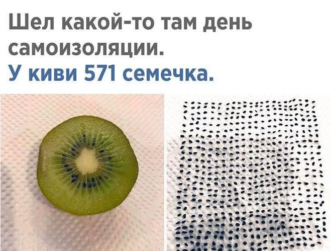 Сколько семечек в киви