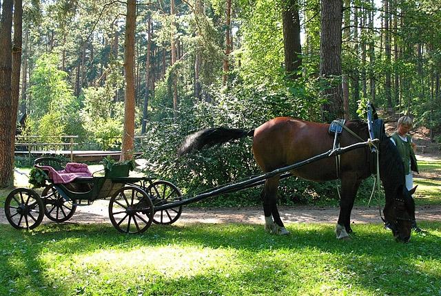 Музеи Риги: Латвийский этнографический музей