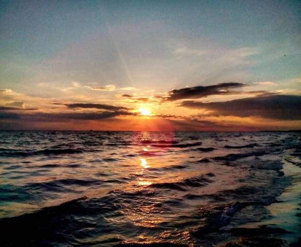 Кинбурнская коса: самое чистое море и самая красивая дикая природа в Украине