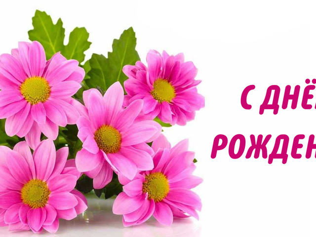 С днем рождения картинка хризантемы