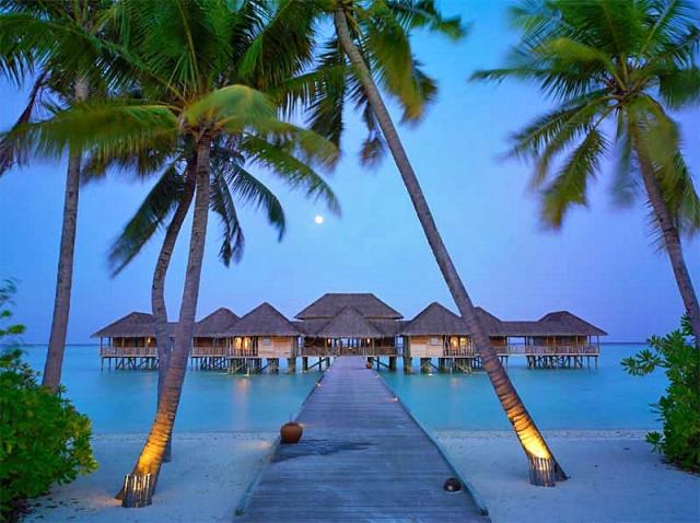 Новогодние туры 2014. Мальдивы