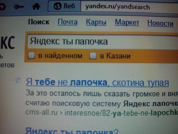 Яндекс, ты лапочка!