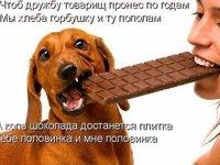 Поділися шоколадкою з другом