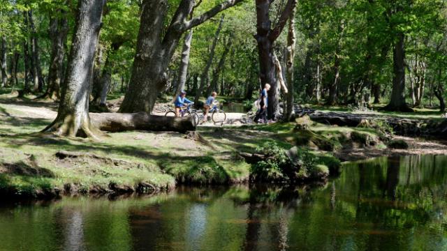 ТОП-5 самых красивых осенних парков в мире