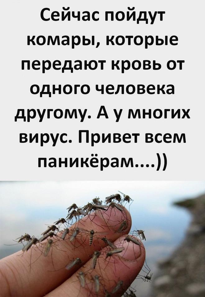 Комары и вирус