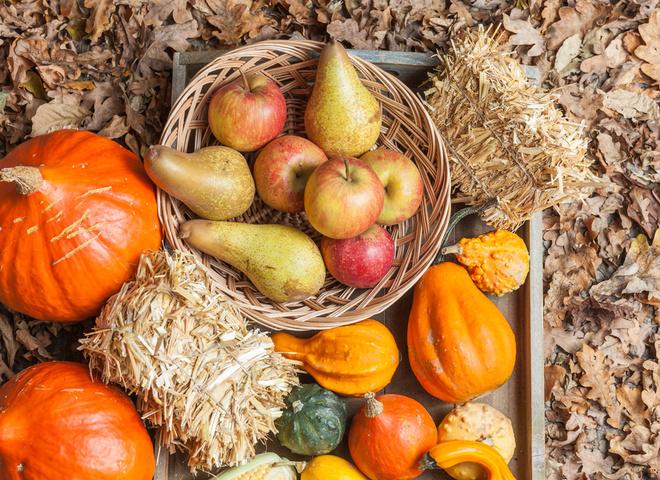 Овощи и фрукты в сентябре