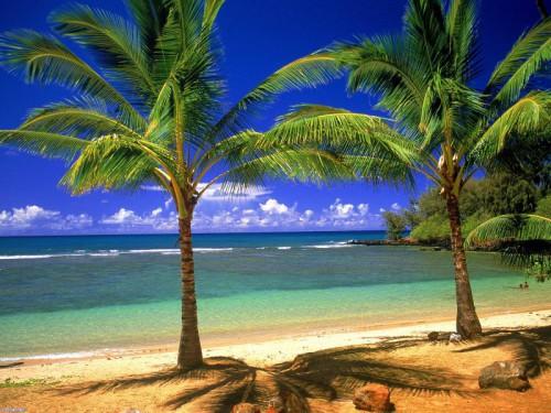Райские уголки на планете