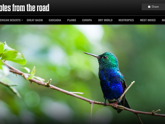Найкращі тревел-блоги: Notes from the Road