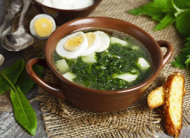 Щавелевый борщ: рецепт весеннего первого блюда