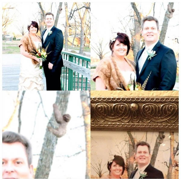 Мама поручила подредактировать ее свадебные фотографии. решил добавить кое-что...