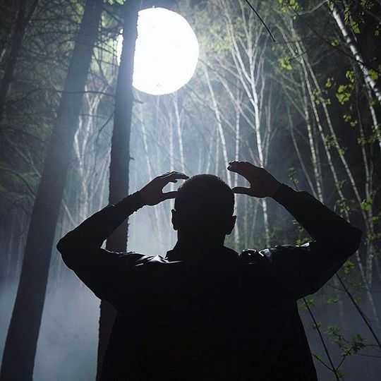 Дима Билан в лесу