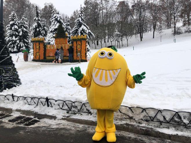 Цитрусовый фестиваль: в Киеве построили замки из апельсинов и лимонов
