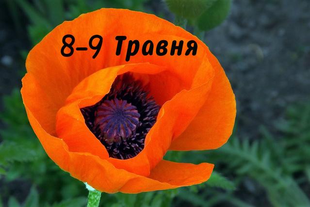 День Перемоги над нацизмом