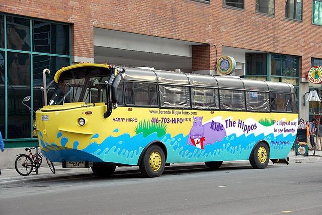 8 найбільш незвичайних видів транспорту: Плаваючий автобус, Канада