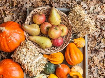 Овочі та фрукти у вересні