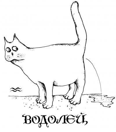 Смешная котейная открытка водолею
