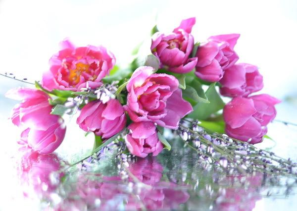 Кенийские розы  купить по низкой цене с доставкой в Уфе