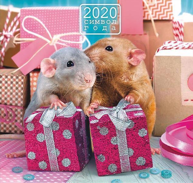 Мимишная открытка на Новый год крысы 2020