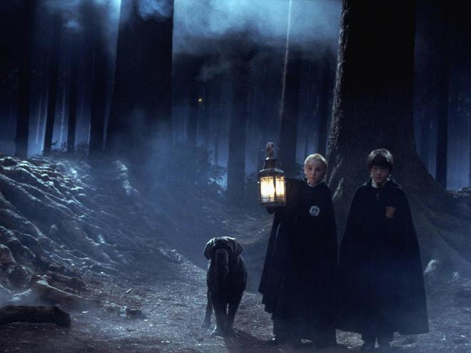 Кинотуризм Гарри Поттер. Черний парк