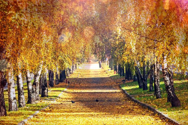 Осеннее равноденствие 2016