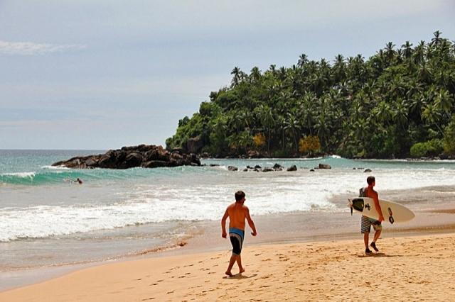Где тепло зимой: Мериса, Шри-Ланка