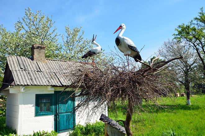 Журавль - символ Украины