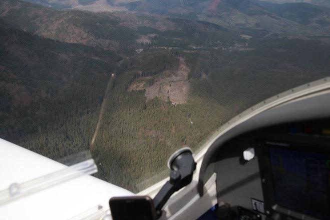вырубка лесов карпаты