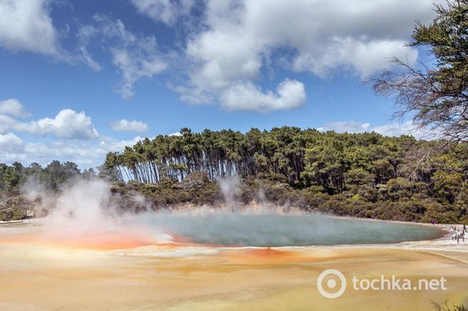 Басейн з шампанським: термальне джерело в Новій Зеландії