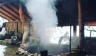 Закарпатское джакузи: СПА-отдых по-украински