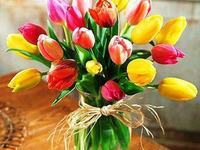 Гарні квіти на День Народження